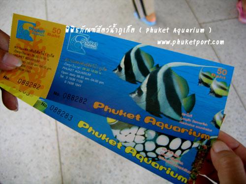 phuket-aquarium03
