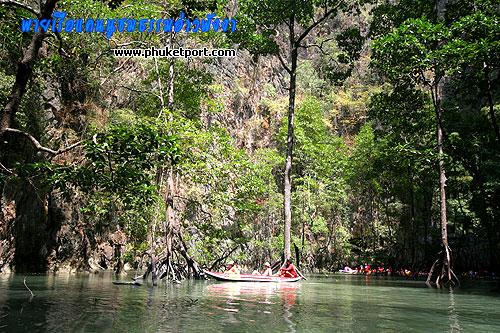 seacanoe-phang-nga311