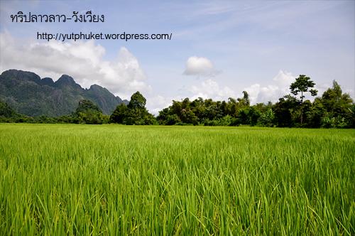 laos-vangvieng26