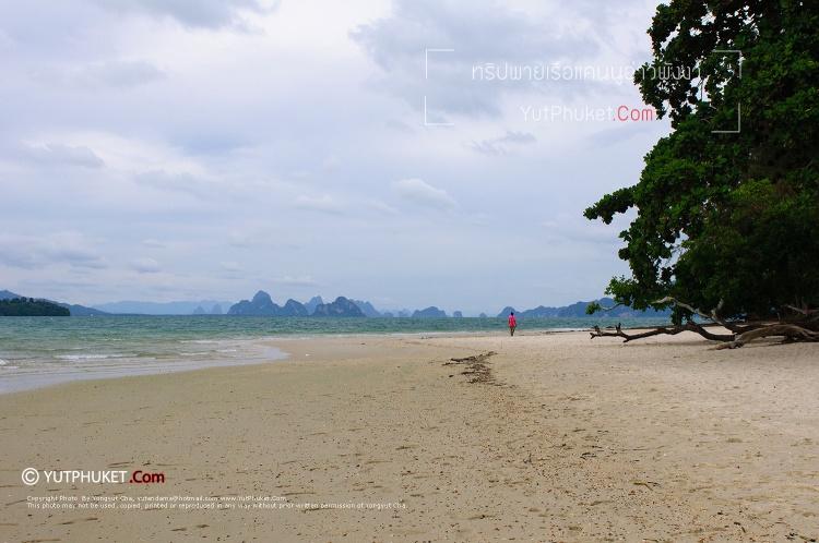 seacanoe-phangnga38