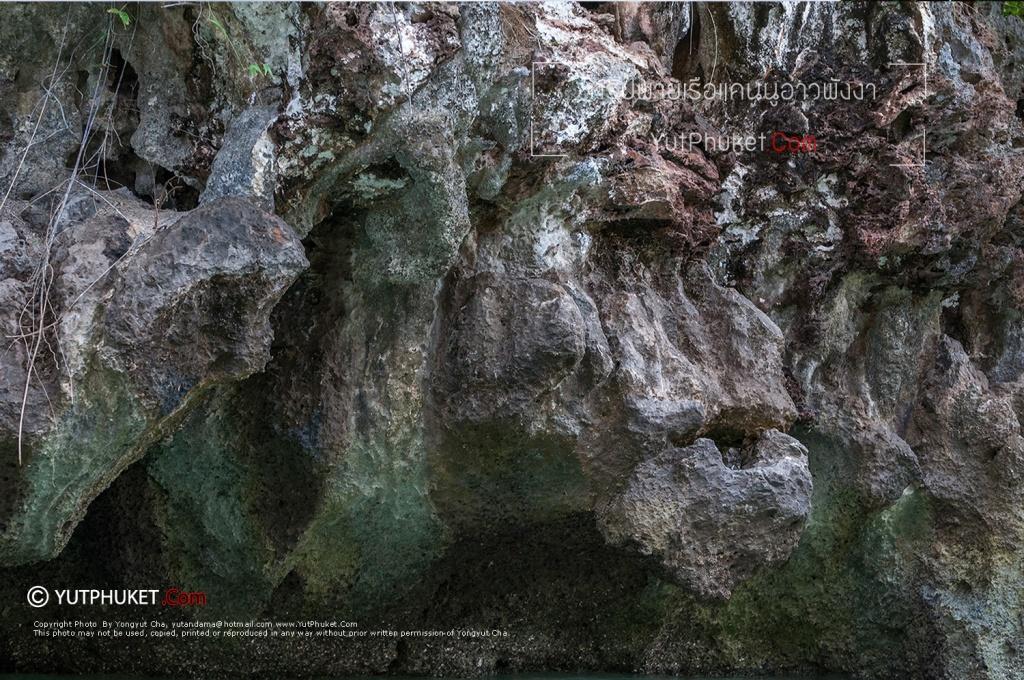 seacanoe-phangnga40